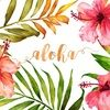 alohakait